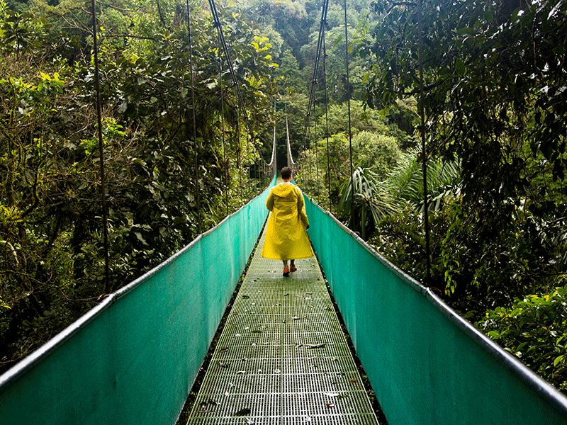 Dschungeltour in Costa Rica