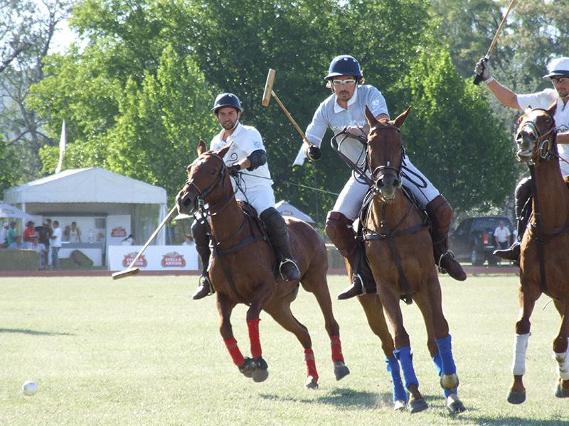 Argentinisches Polo